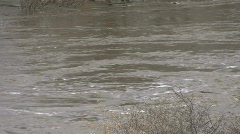 River Tees in flood closeup. Stock Footage