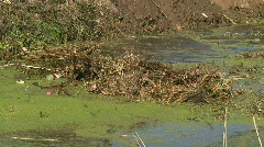 Dredging a canal Stock Footage