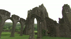 WALES MOMUMENT Stock Footage