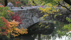 Central Park Stone Bridge Stock Footage