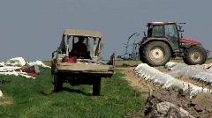 Asparagus harvesting in Bavaria field Stock Footage