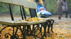 Baby strollers in an autumn park Stock Footage