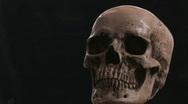 Human Skull CU 6 Stock Footage