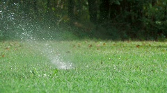 Lawn sprinkler pops up and waters lawn with woods in background Stock Footage