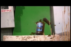Bottles Break as a bullet flys through them on a green screen - stock footage