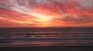 Sunset kite surf flying Stock Footage