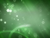 Stock Video Footage of winter green