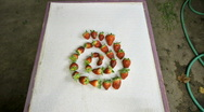 Stock Video Footage of animated  strawberries