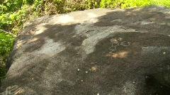 Olmec petroglyphs x3 Stock Footage