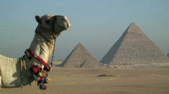 The Pyramids, Cairo Egypt Stock Footage