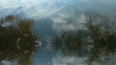 Water Motion Background - stock footage
