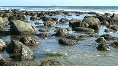 California Tide Pools Stock Footage