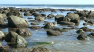 Stock Video Footage of California Tide Pools