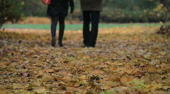 A couple walking away in a park Stock Footage