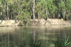 AUSTRALIA-EROSION-RIVERBANK 1 Stock Footage