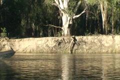 AUSTRALIA-EROSION-RIVER Stock Footage