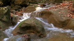River in forest 01 HD Stock Footage