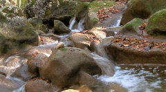 River in forest 03 HD Stock Footage