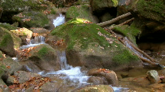 River in forest 05 HD Stock Footage