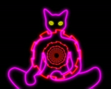 Neon Meditating Tibetan Cat  - stock footage