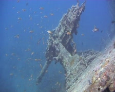 Anti aircraft gun on WW2 shipwreck - SS Thistlegorm Stock Footage