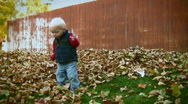 Stock Video Footage of Toddler Playing in Fall Leaves 3