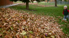 Toddler Playing in Fall Leaves 4 - stock footage