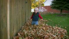 Toddler Playing in Fall Leaves Stock Footage