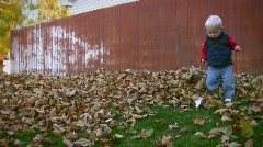 Toddler Playing in Fall Leaves 2 - stock footage
