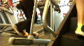Stair Steppers and Ellipticals HD Footage