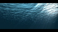 Stock Video Footage of Under water
