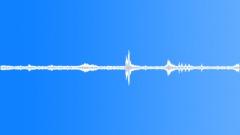 Borneo Sabah Proboscis 02 - stock music