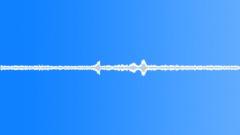 Borneo BellBird - stock music