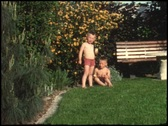 Little brothers sitting in garden (vintage 8 mm amateur film) Stock Footage