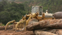 RAIN FOREST LOGGING Deforestation Vietnam Ecology Climate Change Lumber Industry Stock Footage