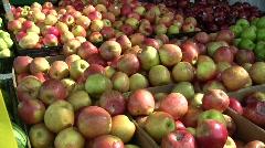 Apples in Farmer's Market Fresh in Bins Zoom Out  Stock Footage