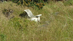 Seat back to nature Stock Footage