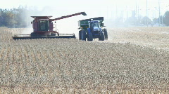 Tractor And Combine Harvester Harvesting Soy - stock footage
