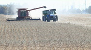 Tractor And Combine Harvester Harvesting Soy Stock Footage