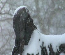 Women Statue during Snowfall Stock Footage