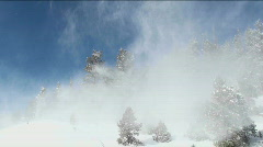 Snow Blows Through Trees Stock Footage