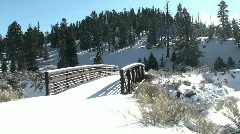 Bridge Snow Stroll - stock footage