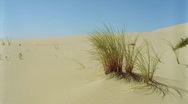 Sand Dunes - BG040HD Stock Footage