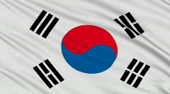 South Korean flag, with real structure of a fabric - stock footage