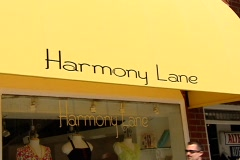 Harmony Lane Boutique Stock Footage