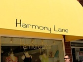 Stock Video Footage of Harmony Lane Boutique