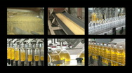 Soybean oil manufacturing Stock Footage