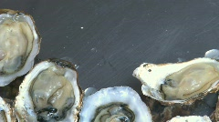 filling a tray with oysters - stock footage