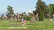 Stock Video Footage of US Flags in Cemetery (Memorial Day)