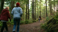 Family in the Forest Stock Footage